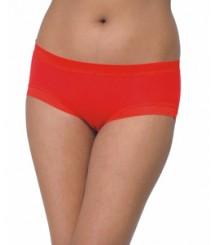 Full Hipester Sexy Designer Panty